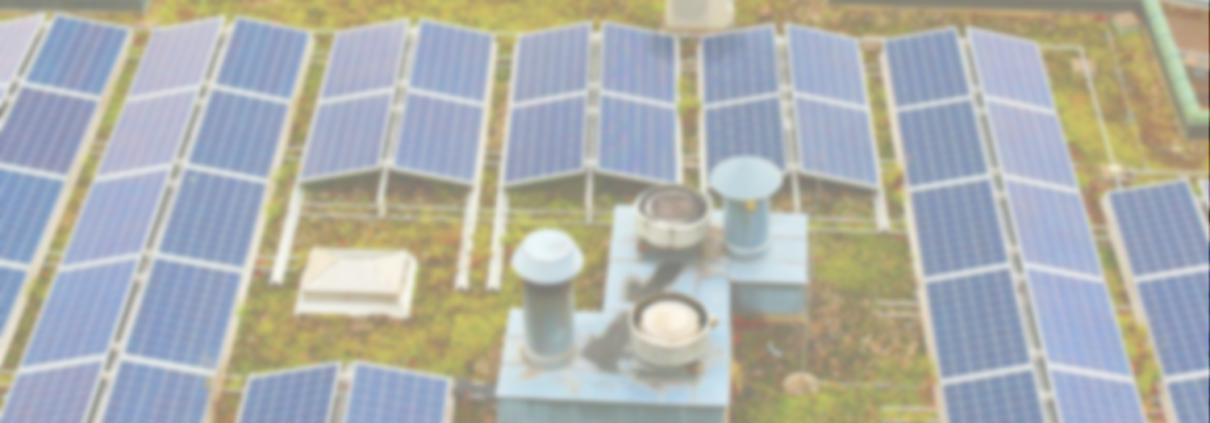 Gründach mit PV-Anlage